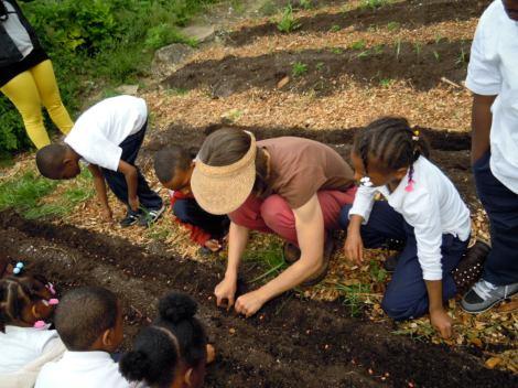 K-1 class plants beans!