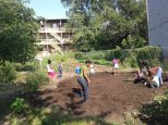 Making the Honeybun Garden